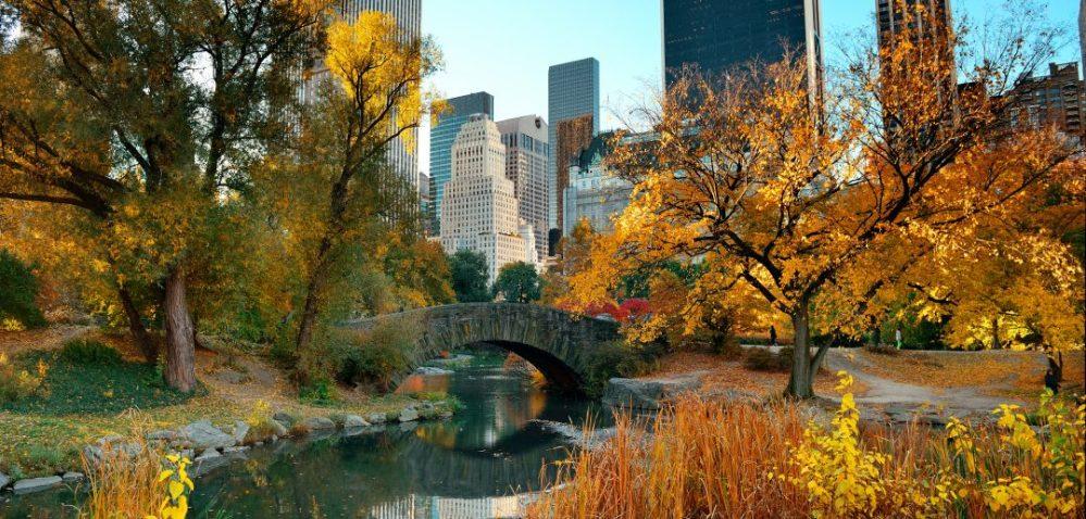 Central-Park-Fall-NYCjpg-1078x516